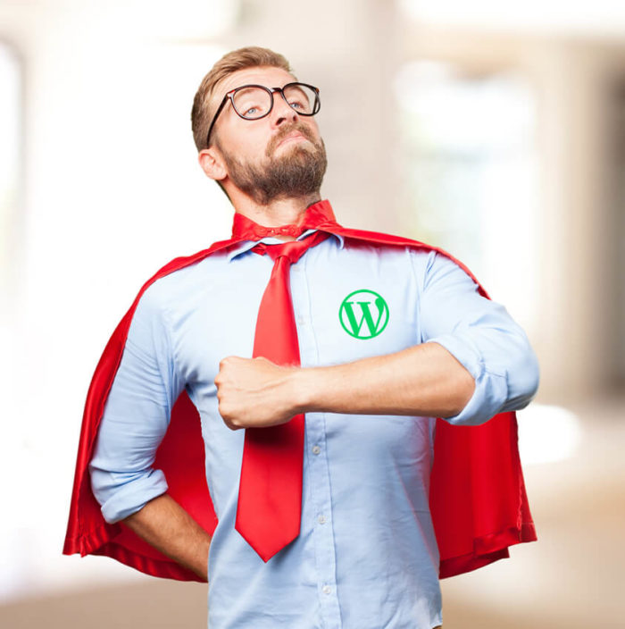 plugins wordpress - Superhero
